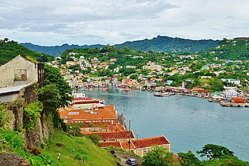 The citizenship of Grenada - only positive testimonials, #1